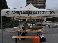 Globalizáció Light Turné, Veszprém - Utcai kampány